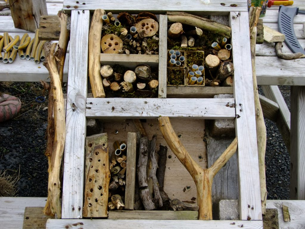 Bug house half made